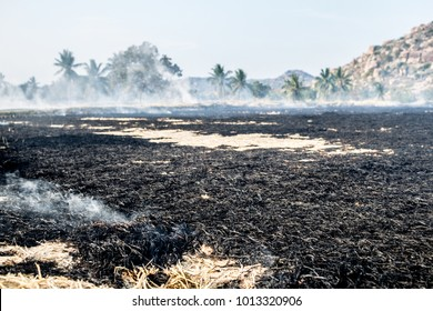 The ashes and smoke after a field burned in rural India.