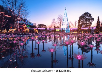 Ashikaga Japan - January 18, 2019: Winter LED light up illumination of Ashikaga Flower Park at night in Tochigi, and The Miraculous Great Wisteria light show is popular in this place, Ashikaga, Japan