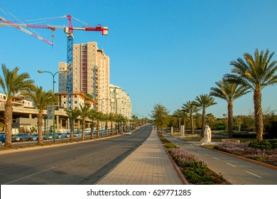 Ashkelon on summer street with palm trees