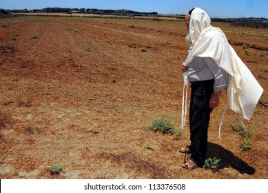 ASHKELON-JULY 12:Jewish man prays in his field during Shmitta (Sabbatical Year) on JULY 12 2007 in Ashkelon, Israel. It's the seven-year agricultural cycle mandated by the Torah for the Land of Israel