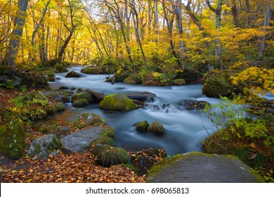 Asia - Beautiful landscape. Oirase Stream (Oirase Keiry?) is a picturesque mountain stream in Aomori Prefecture that is one of Japan's most famous and popular autumn colors destinations. janpan