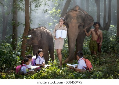 Asia beutiful teacher with children and elephant on nature field trip.
