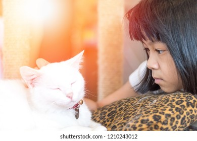 Asia child with autism spectrum disorder (ASD),kid girl playing with Siamese white cat for pet therapy.