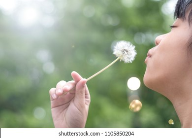 Asia child girl blowing dandelion with blur nature green tree background