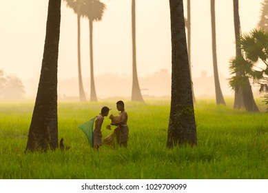 Asia children fisher looking fishing gear in agriculture rice field concept.Asian boy Indonesia Thailand and Vietnam fishing in rice field for food in the morning with fog background.