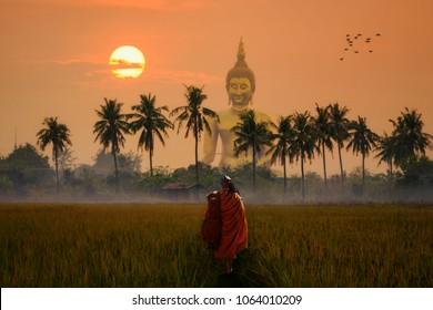 Asia Monk walking dhutanga Big Buddha front at Wat Muang Angthong, Temple thailand in sunset.