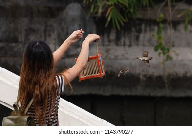 Asia woman releasing bird from cage to freedom is one of the Buddhist activity