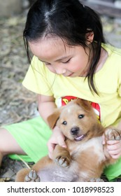 Asian baby carry a baby dog , puppy and Asian girl
