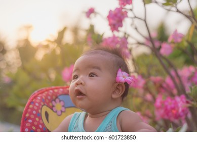 Asian baby girl on stroller and walking in Impala Lily flowers g