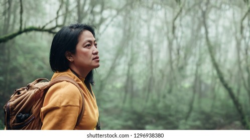 Asian backpacker looking at view in rain forest nutural trail.banner mock up leave copy space for adding text