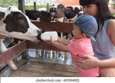Asian beautiful mother is take care your cute new born baby feeding milk for baby cow in the farm, Activities family to enhance the learning experience of children.