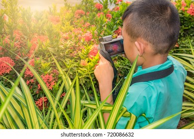 Asian boy child take a photo of flower on sunrise