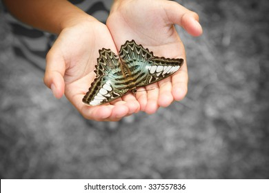 Asian boy holding butterfly.