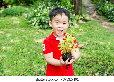 Asian boy plants a tree.Child holding young seedling plant in hands on green background to plant. Concept Earth day