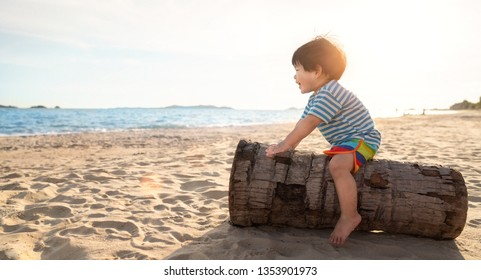 Asian boy play with coconut tree on the beach, this image can use for relax, kid, baby, sea, summer and children