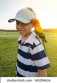 Asian boy play with his pet parrot in the park.