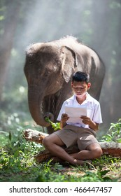 Asian boy reading a book with his baby elephant.