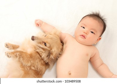 Asian boys and dachshund lying