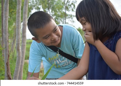 Asian brother and sister in a rice field.