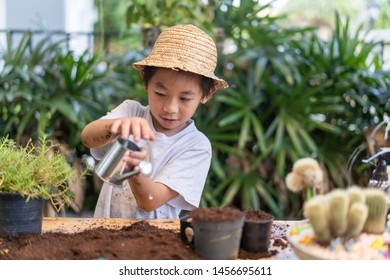 asian child carrying a bag of potting seedlings to be planted into the soil. Spring flowers at home.Amazing photo of kid and plant. Love and solicitude.Environment concept