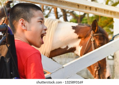 Asian child is smiling on a wheelchair. He sitting in the ranch. In the white fence there is a horse, Life in the education age of disabled children, Happy disabled kid concept.