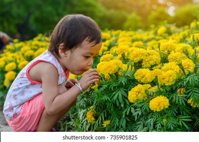 Asian children girl is sniffing flowers.