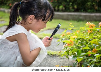 Asian Chinese little girl looking at flower through a magnifying glass in outdoor garden