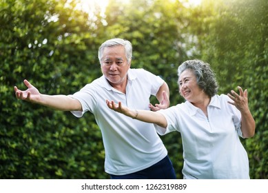 Asian Couple practicing Tai Chi in the park together. Healthy, workout and relaxation concepts. Smiling Chinese or Thai or Japanese people.