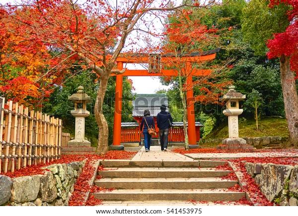 An asian couple is walking under red torii in autumn season. Japan