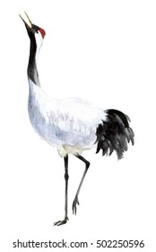 Asian crane bird traditional watercolor. Bird silhouette sketch. Wildlife art illustration. Vintage graphic for fabric, postcard, greeting card, book, poster, tee-shirt