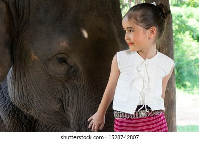 Asian cute girl standing in front of elephant happy face at Chiang Mai, Northern Thailand.