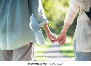 Asian elderly couple holding hands over natural background
