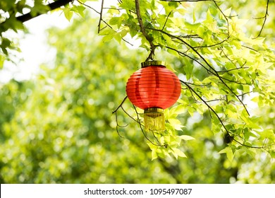 Asian elements, green tree and red lanterns
