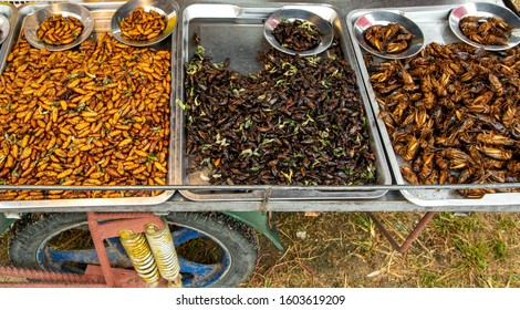 Asian exotic food at local grocery street food market. Roasted and salted locusts, maggots, caterpillars and larvae. Pure and natural protein. Thai Cuisine - Gourmet and Exotic. Phuket, Thailand