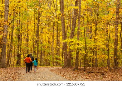An Asian family goes for a walk into the woods amongst beautiful fall foliage.