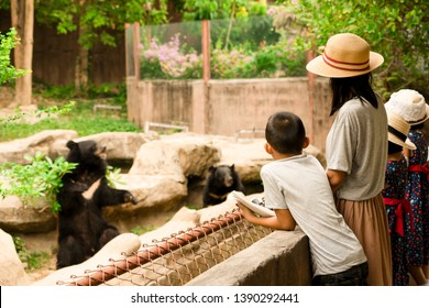 Asian family kids learning outdoor on vacation summer, family funny are mother brother and sister looking bear in zoo, feeding animals