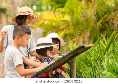 Asian family kids learning outdoor on vacation summer holiday, mother brother and sister writing data knowledge to notebook, children happy funny and playful on activity study in travel journey  zoo