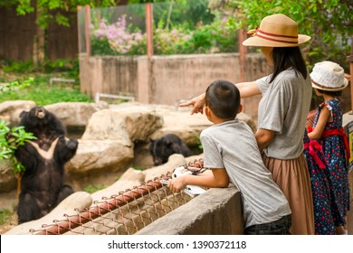 Asian family kids learning outdoor on vacation summer holiday, mother brother and sisters looking bear show for feeding in zoo, boy child holding telescope , pen and notebook for writing knowledge