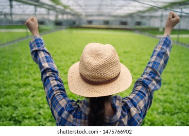 Asian farmer girl wearing hat working in hydroponics green house. She raising both hands say hooray feeling happy of her succeed. Seen behind the girl from top view. Agriculture business concept.