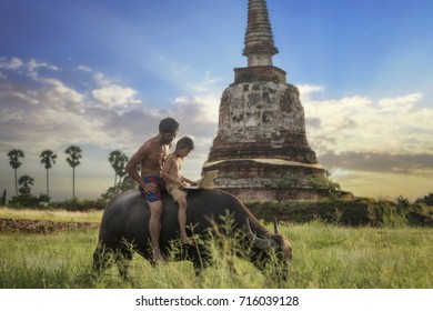 Asian farmer and his son ride a buffalo and playing laptop in Countryside of Thailand, Ayutthaya, Thailand.