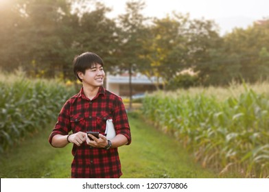 Asian farmer using smartphone for checking his crops while working in cornfield, Innovation technology for smart farm system, Agriculture management, Digital agriculture