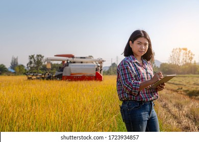 Asian farmer using tablet for control and record harvest information. in rice field. Organic farming, food production and smart agriculture technology concept.