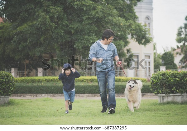 Asian father and son walking with a siberian husky dog in the park under the rain