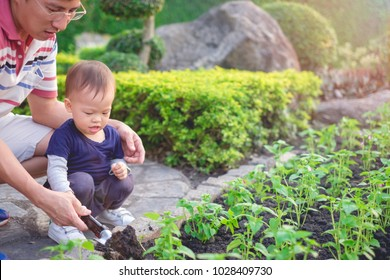 Asian father teaching cute little 18 months / 1 year old toddler baby boy child planting young tree on black soil in green garden, Dad and son gardening together, Save the world & environment concept