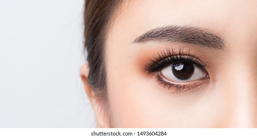 Asian female Eye with Extreme Long False Eyelashes. Eyelash Extensions. Makeup, Cosmetics, Close up macro eye woman.