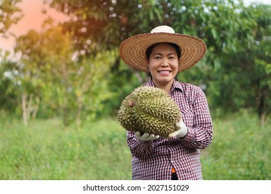 Asian female gardener shows durian fruits after harvesting. Smiles. Feeling proud and happy with fruit product from her garden. Concept : Happy farmer. Organic farming .
