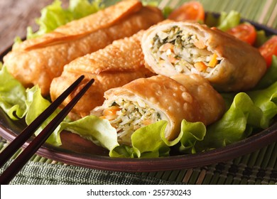 Asian fried spring rolls stuffed with vegetables on a plate and chopsticks close-up. horizontal