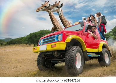 Asian friend group travel safari , savanna, safari, animal, trip, traval concep