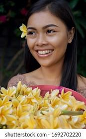 Asian girl. Beautiful Balinese women in traditional dress collects yellow plumeria frangipani flower in beautiful garden