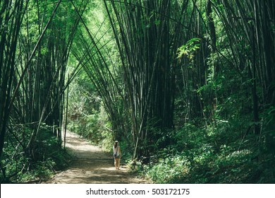 Asian girl exploring Bamboo forest in Khao Sok National Park, Thailand